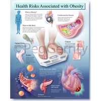 Obesity Poster 447